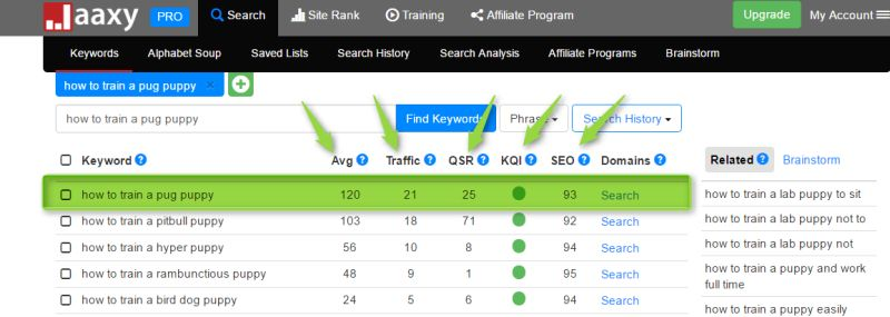jaaxy keyword research review