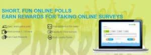survey goo panel intro page