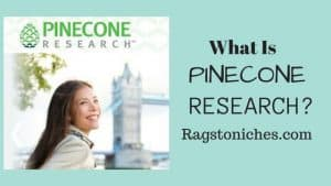 what is pinecone research, is it a scam