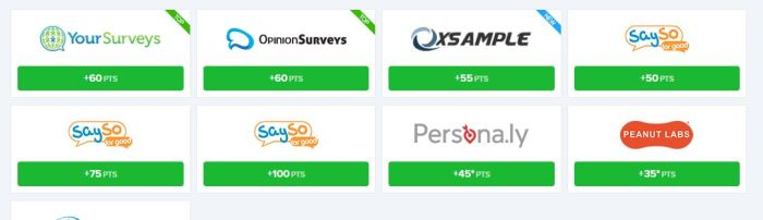 earnably surveys