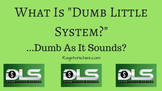 what is dumb little system