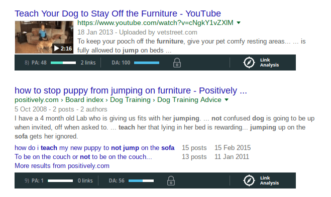 dog video and forum keyword