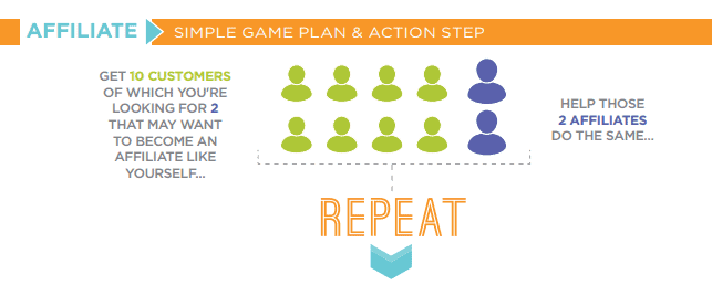 vemma action plan