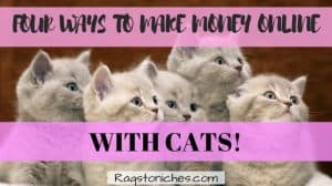 ways to make money from cats online