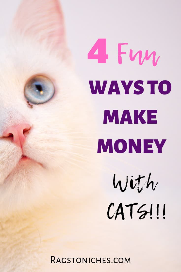 Make Money Off Your Cat