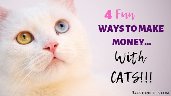 fun ways to make money from Cats online