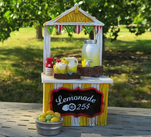 sell lemonade, or other food for cash.