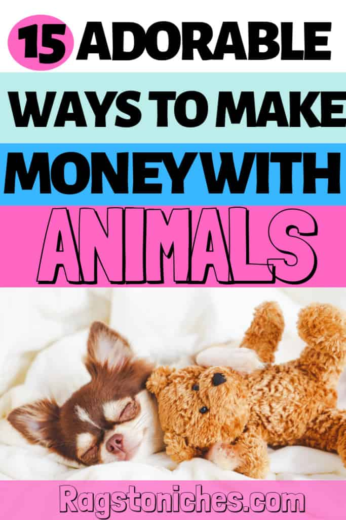 15 adorable ways to make money with Animals!