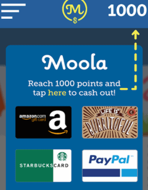 MoolaBag gift cards available