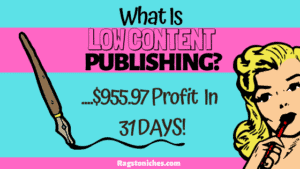 what is low content publishing on KDP