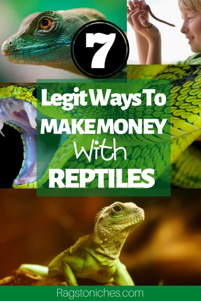 legit ways you can make money with reptiles.